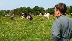 BPREA élevage, s'installer en élevage, aides à l'installation