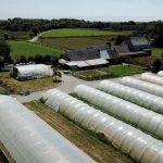 Le Brevet Professionnel Responsable d'Entreprise Agricole (BPREA)