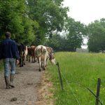 Découvrir les métiers de l'agriculture