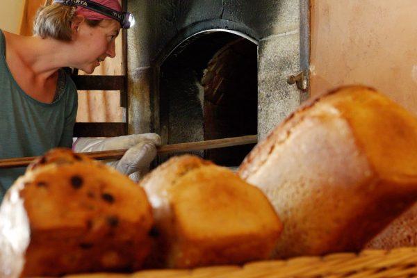 s'installer paysan boulanger